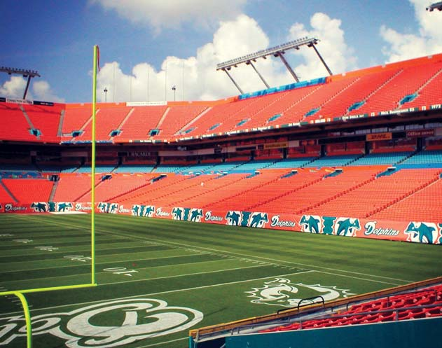 Miami Dolphins CoolFlex