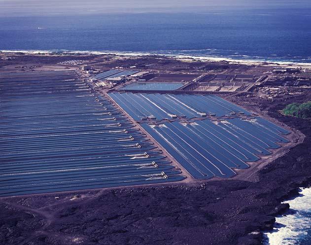 CoolPro Aquaculture